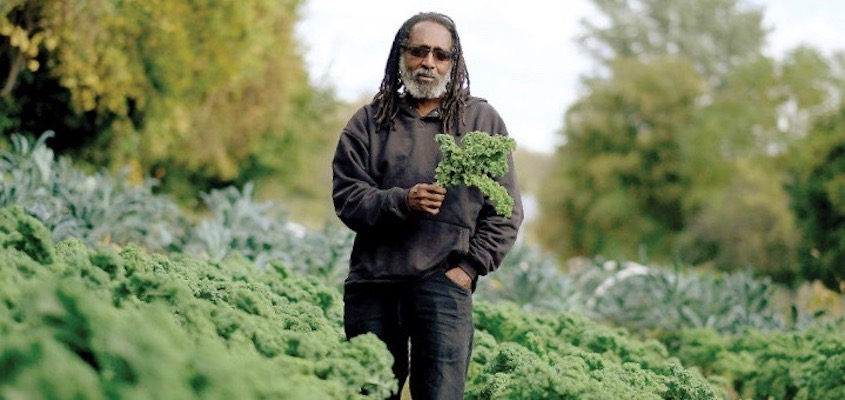 Why Co-ops and Community Farms Can't Close the Racial Wealth Gap